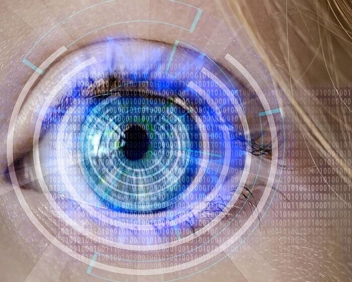 eye-1-1-1.jpg (178.29 Kb)