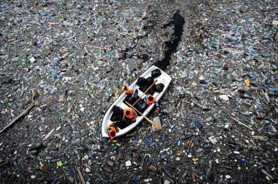 garbage1.jpg (81.76 Kb)