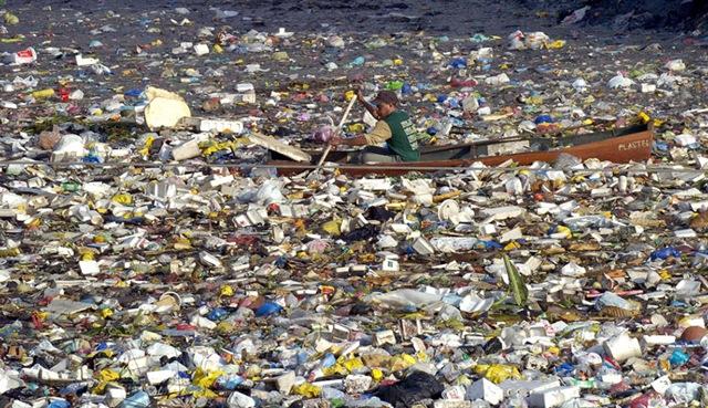 garbage4.jpg (159.56 Kb)