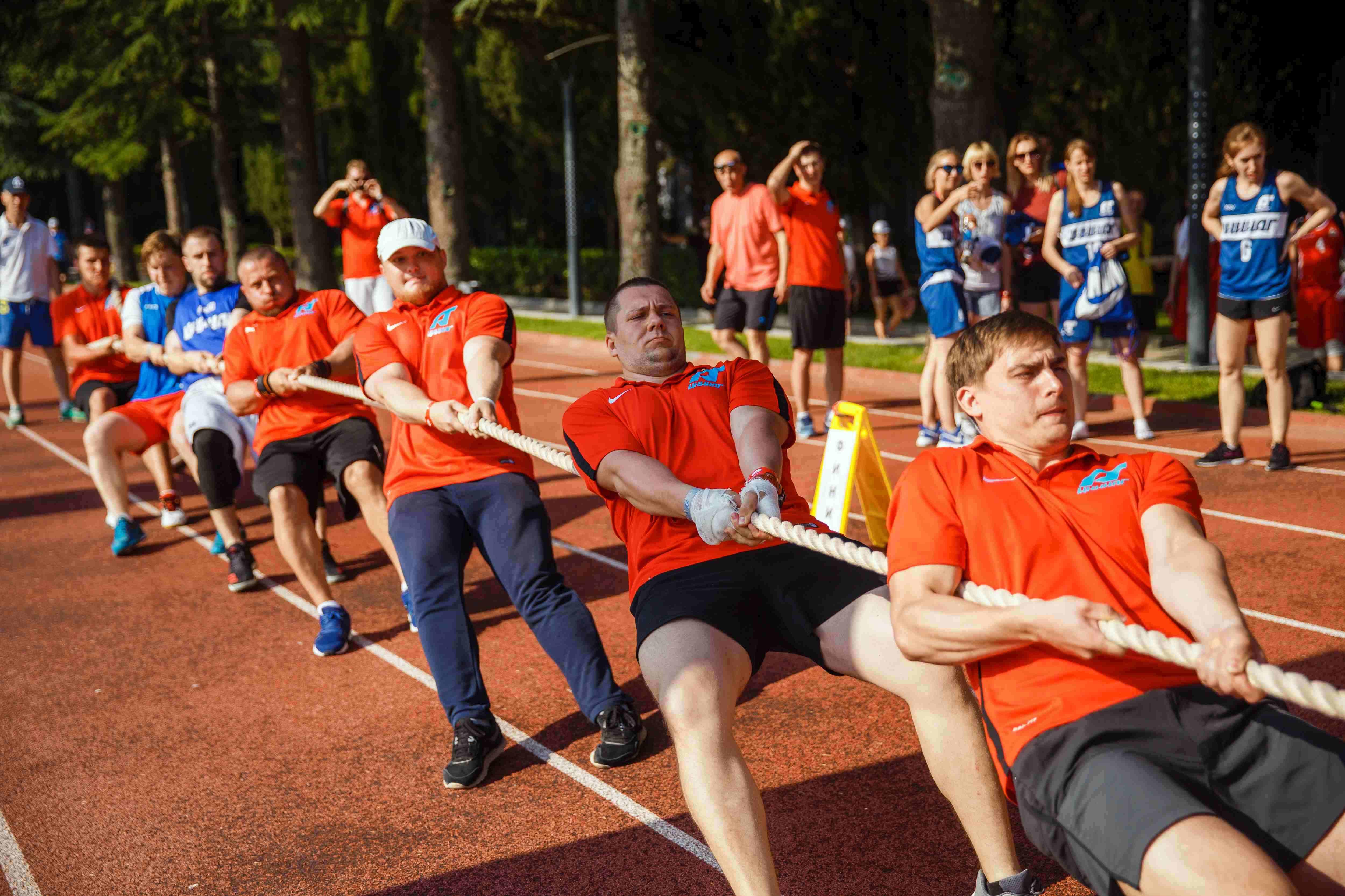 Перетягування канату, дартс і боулінг. Які ще види спорту фінансують в Україні з бюджету?