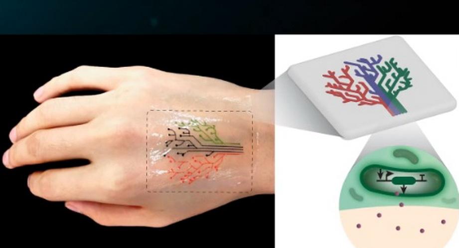 «Живе татуювання» набили бактеріями за допомогою 3D-друку (ВІДЕО)