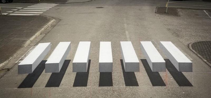 zebra1.jpg (91.97 Kb)