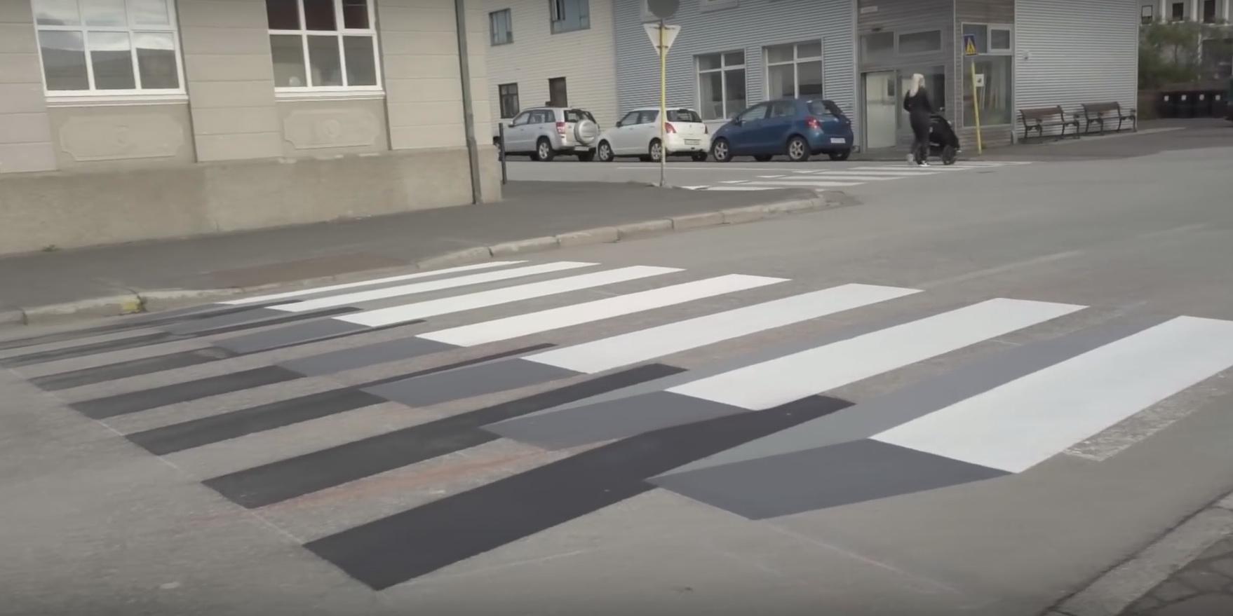 zebra4.jpg (232.4 Kb)